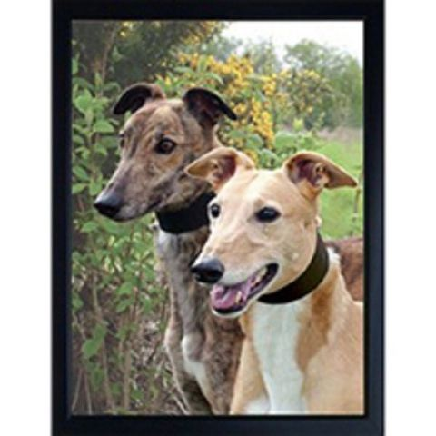 GREYHOUND 3D FRIDGE MAGNET